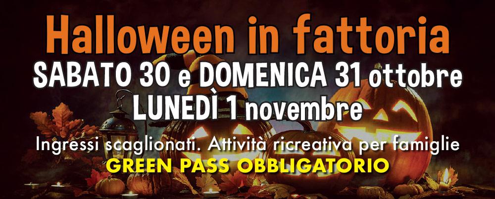 Halloween in fattoria:  sabato 30 e domenica 31 ottobre – lunedì 1 novembre